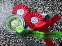 22.05.2016 Nationale Jagdhundeausstellung in Arnhem / Holland